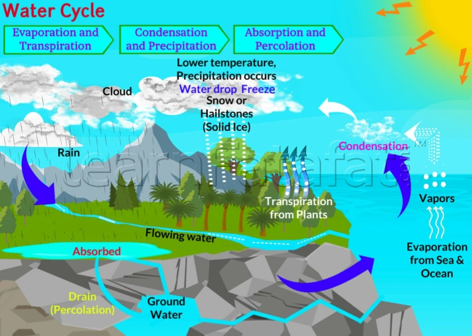 Water cycle | Class 9 Chapter 14 Natural Resources