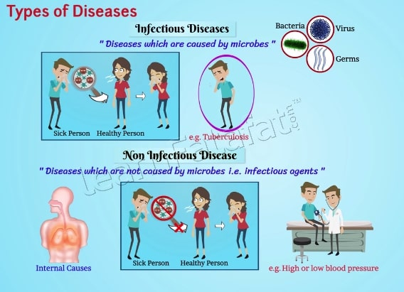 Disease - Types, Causes and Effects | Class 9 Ch 13 Why do we fall ill?