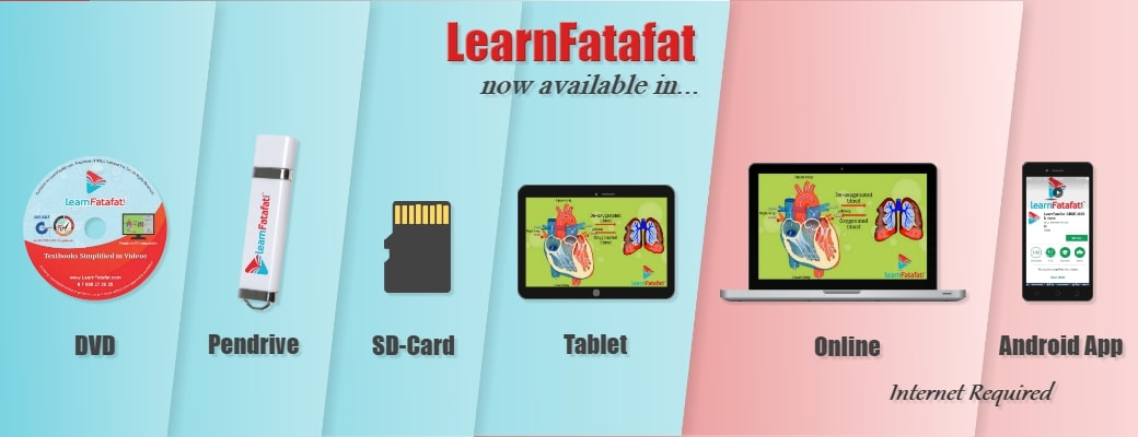 LearnFatafat Courses for All Boards kids and competitive exams