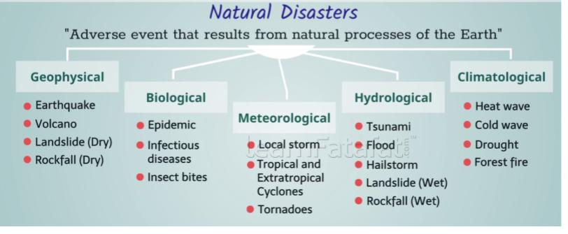 What is disaster management