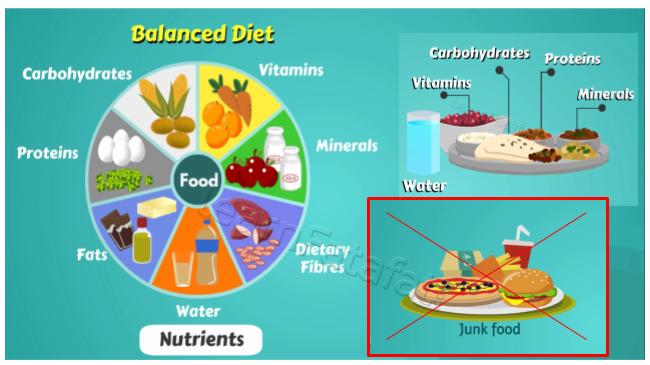 What is balanced diet | Components of Balanced Diet