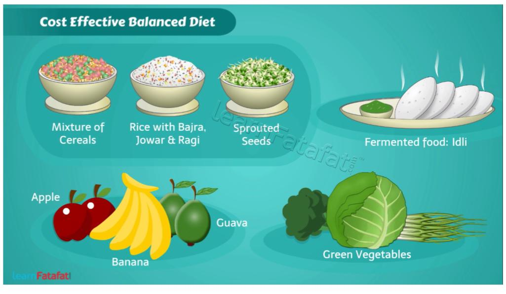 What is balanced diet | Healthy food